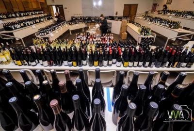 Czy degustacji wina można się nauczyć?