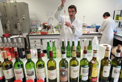 Skąd w winie aromaty dębowe?